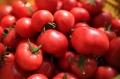 如何挑選好吃的西紅柿?