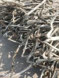 九臺區電線電纜回收 九臺區光纜回收廠家