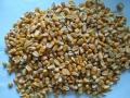 收購大量玉米