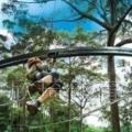 安徽叢林穿梭體育設備廠家欣琦體育