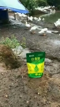 廣東清遠市肉鴨養殖催肥藥