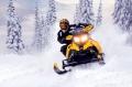 大公牛雪地摩托車