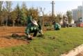 广东园林绿化种植土检测规范哪里可以做