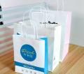 纸质打包袋、纸质餐饮外卖包装袋设计印刷-彩客