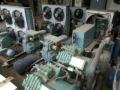 吴江冷大型库机组回收出售、吴江冷库设备回收出售