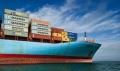 山东青岛到福建漳州海运集装箱船运价格多少钱一吨