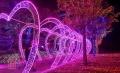 春節主題夢幻燈光節廠家 燈光節制作廠家