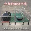 譽發畜牧單體產床母豬限位欄產床養豬設備