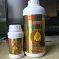 膨果期調色師肥料可以用作基肥促進果實生長
