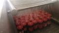 香菇酱喷淋式杀菌机 利特定制加工