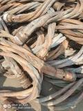 昌圖縣電線電纜回收 昌圖縣電線回收信譽第一
