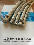 鋼芯鋁絞線工廠