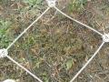 牡丹江主动防护网
