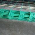 厂加固路基双向钢塑土工格栅平塘县山体绿化植物攀爬网栅