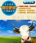 牛腹瀉拉稀專用的益生菌產品
