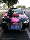 廣州商務包車奧迪A4自駕粵A牌代步車出租自駕租車奧迪