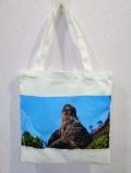 帆布包定做 帆布包訂制 廣告帆布包
