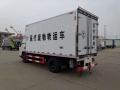 河北石家莊江鈴4.2米藍牌醫療廢物冷藏車直銷