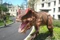 大小恐龍均有出租仿真恐龍展出租出售