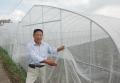 供應豆蟲養殖防蟲網細密抗風好紗網