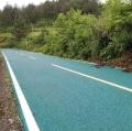 龍華游樂場彩色瀝青路面鋪設