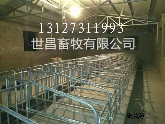 生产安装加宽加重母猪定位栏猪场用具母猪限位栏可定制尺寸