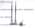 共軌閥組件F00VC01318,F00VC01323