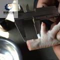 雞爪脫骨機去雞爪指甲切一段二段三段切半