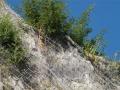 边坡防护钢网