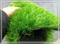 ?#20048;?#20248;质的环保绿化草坪地毯哪家好