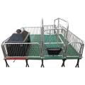 直供單體供應落地式定位欄產床譽發畜牧設備