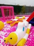 蕪湖大藍鯨魚島海洋球樂園設備22米租賃啦