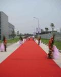 紅地毯適用場合廣泛