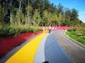 瀝青改色彩色路面 水性聚合物彩漿 水性聚合物薄層