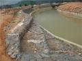 熱鍍鋅石籠網箱的植被特性 熱鍍鋅石籠網水堤防護