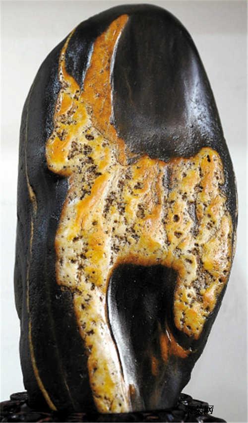 动物奇石什么地方拍卖价格高   动物奇石-展览展销-私下交易-全国征集