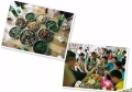 深圳南山科技园周边农家乐可以员工团建聚餐一日游