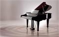 無錫宜興手風琴回收商店