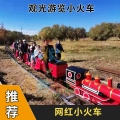 山西清徐景區觀光有軌小火車電動小火車出行無憂