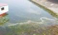 廣州工業污水檢測 廢水排放報告辦理