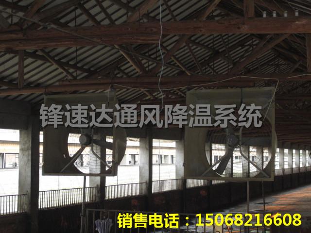 钢结构铁皮厂房高温闷热安装屋顶风机