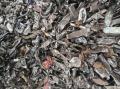 山东地区长期回收破碎铁垃圾料