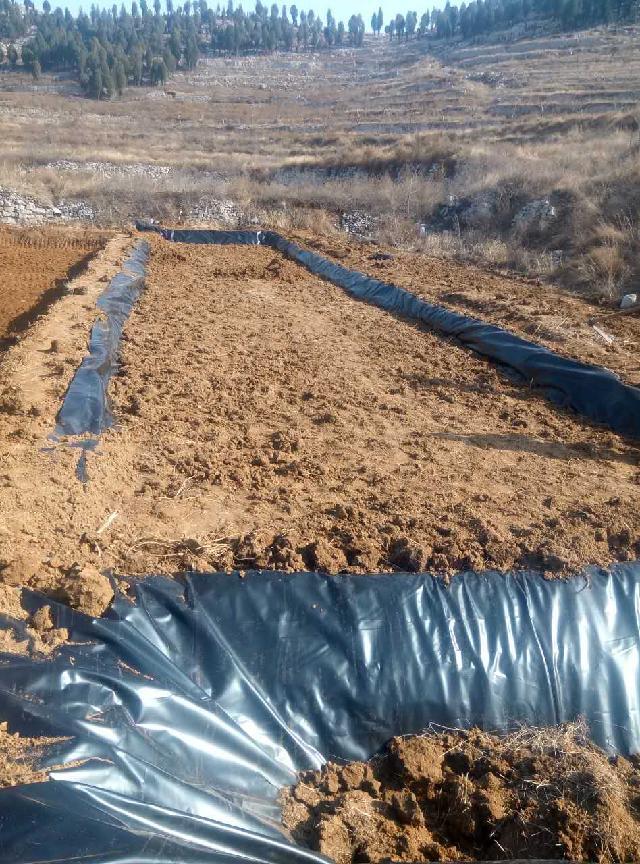 南昌车库绿化排水板%楼顶防水板