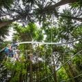 叢林穿梭景區無動力設備