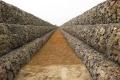 石笼网-格宾网-铅丝笼