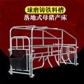 生產供應單體供應落地式定位欄產床譽發畜牧設備