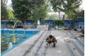 游泳館太陽能熱水工程