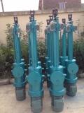 液壓推桿 DYT型電液推桿 DYTZ2000-500