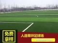 天津濱海新區仿真假草地面施工學校足球場草墊