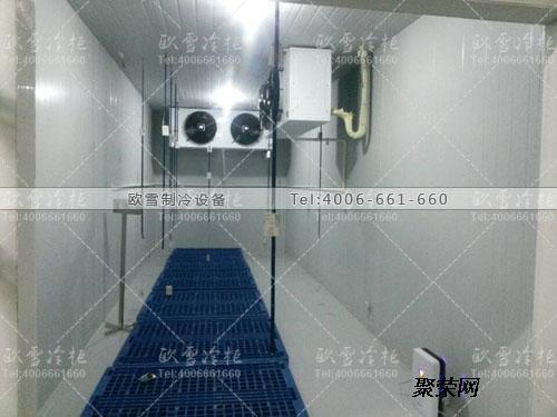 南京市低温冷冻柜冷冻库那个公司可以做欧雪